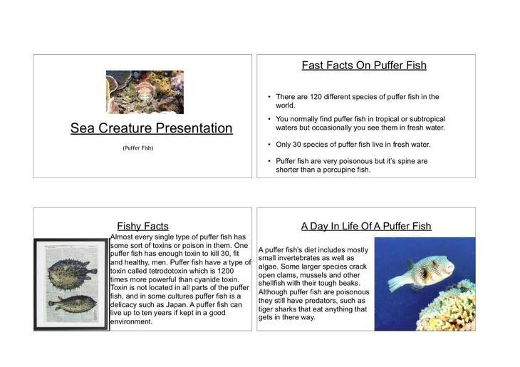 Oliver K.W's Underwater Creature Presentation