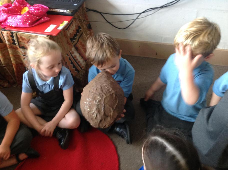 We looked closely at the egg.
