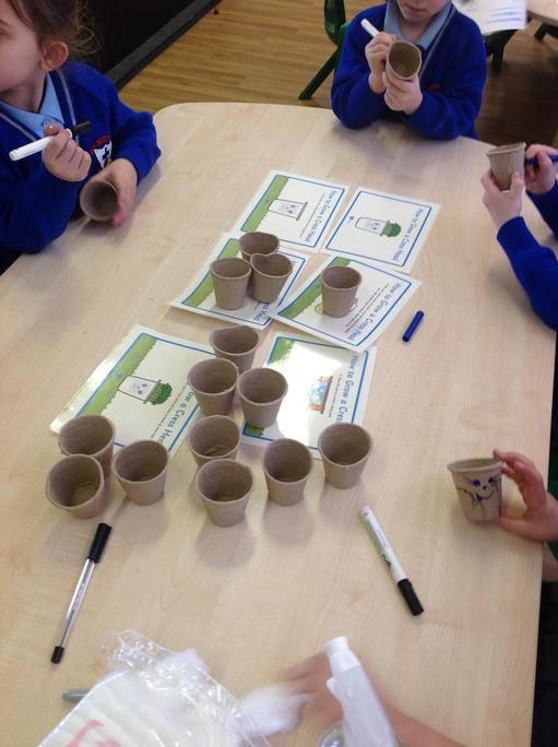 Following instructions to make cress heads