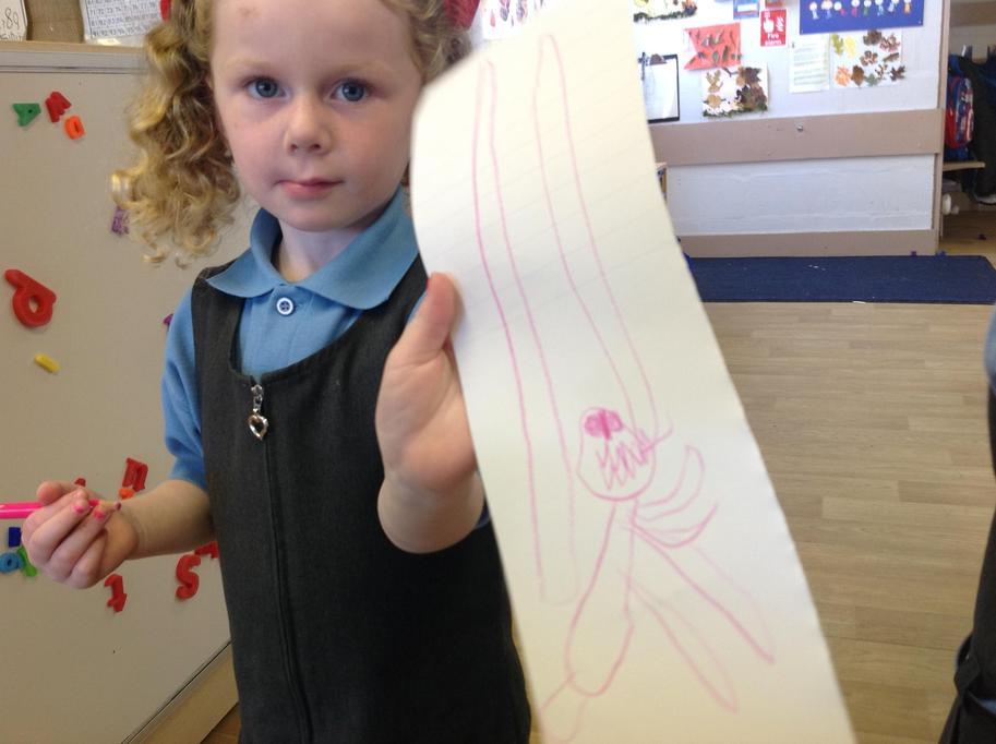 Amelia thinks the dinosaur looks like this!