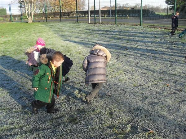 Our frosty morning walk