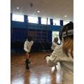 PE: Fencing