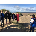Dune Systems - Oracy Talk Tasks