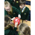 Y6 Scientists at our KS2 Science Club