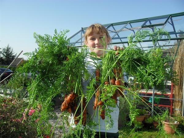 Gardening Club