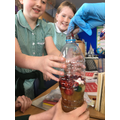Science - What are the components of blood? What is their function?