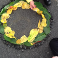 Awe&Wonder! Andy Goldsworthy inspired natural art!