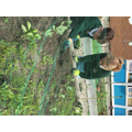 Green-fingered Year 6 children tending to our class bed.