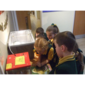 Year 1 visit the Chicks