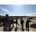 Exploring the Dune Systems