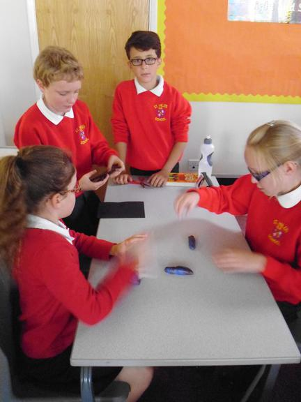 Working as a group to solve a problem