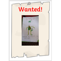 Robin Hood wanted poster