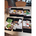 Each year group received some planting trays and a variety of seeds