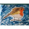 Rafael's painted robin