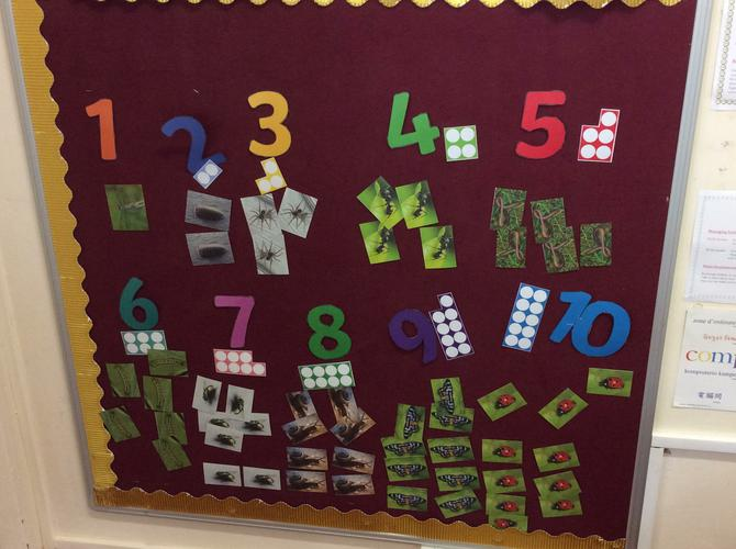 Interactive displays to support our number work