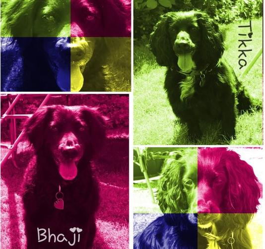 Ruby featuring Tikka and Bhaji