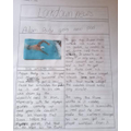 A great newspaper report by Shannon