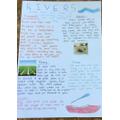 Isobel W's River poster