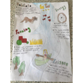 Lyra's river poster