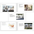 Leo created a great PPT-The White Lion
