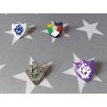 Wow Lilli!  Amazing Blue Peter badges!