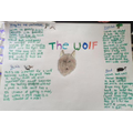 Some great wolf research by Shannon