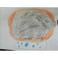 Caden's fantastic picture of Cocoa!