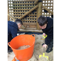 Problem solving and teamwork in the sand