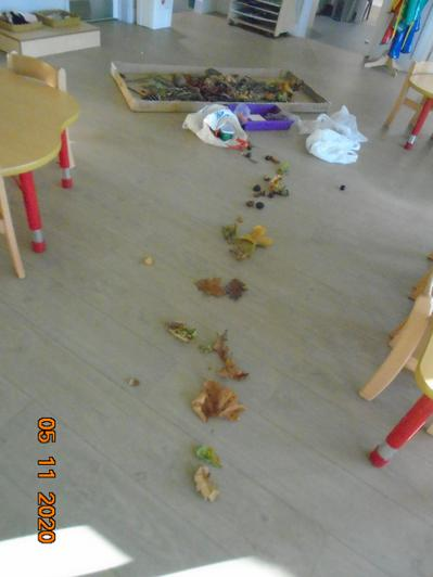 Something made a mess in Caterpillars class