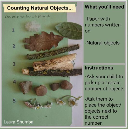What objects can you find to count?