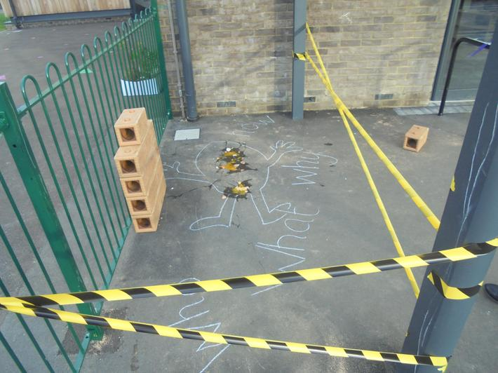We discovered a crime scene in our outdoor area!