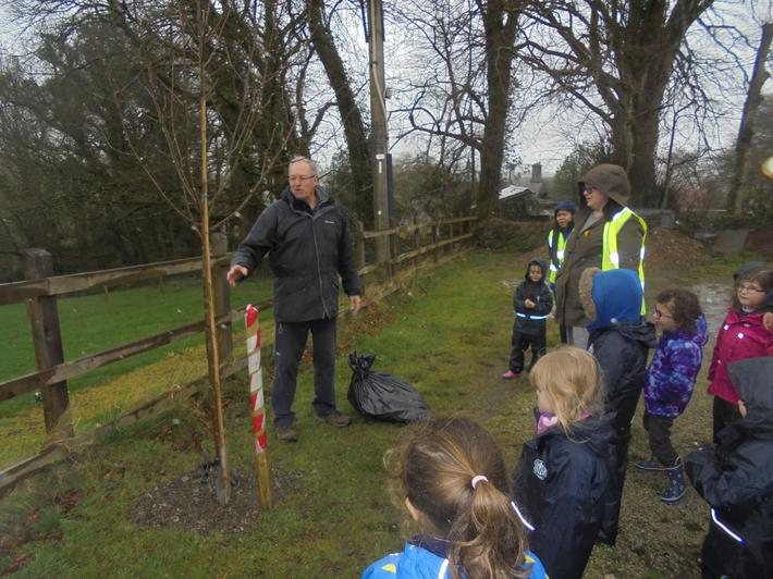 We helped David to care for newly planted trees.