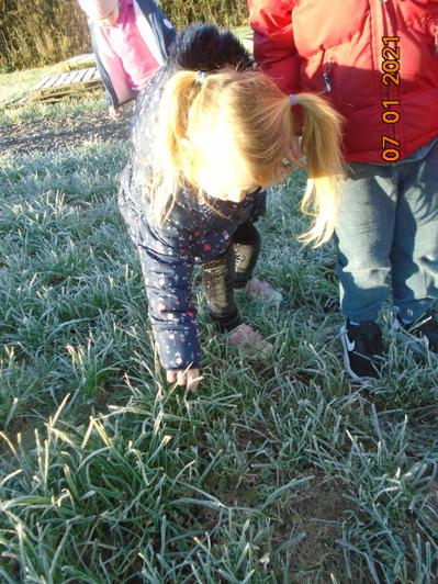 We were curious about the frost.