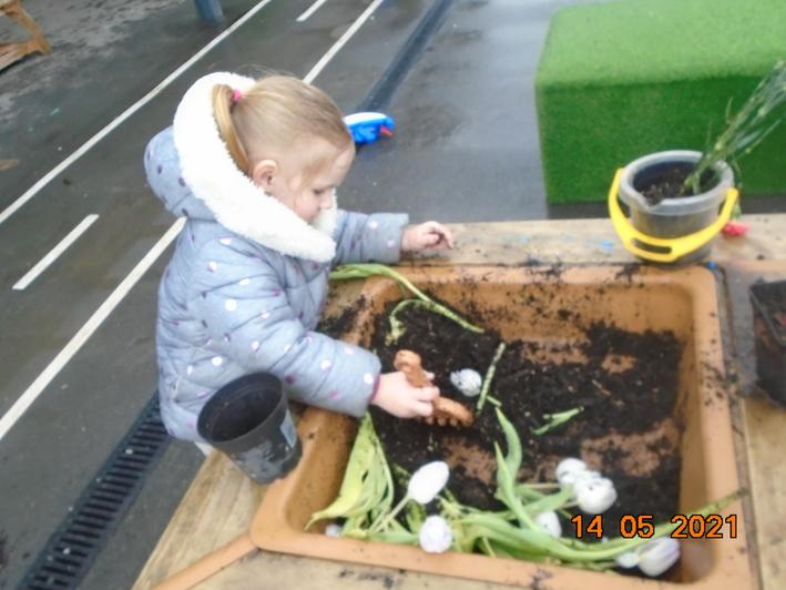 Planting flowers and seeds.
