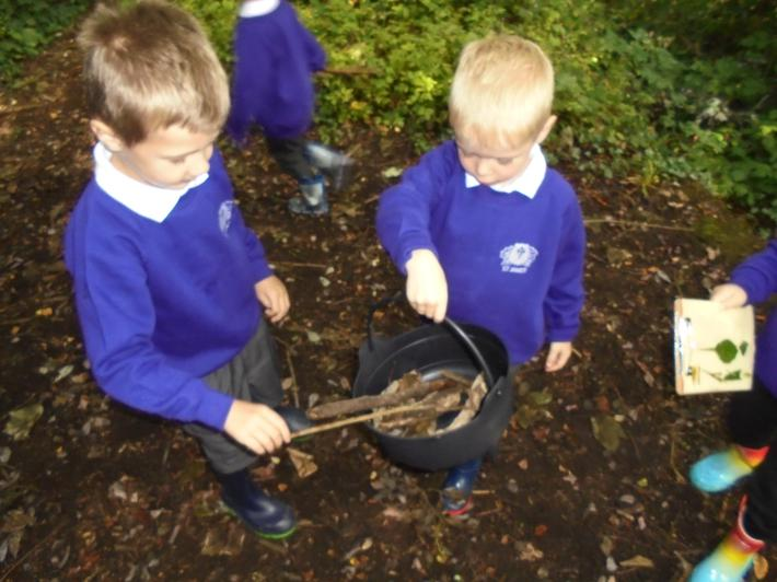 We collected a variety of sticks in the woodland.