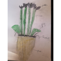 Eden has been busy labeling parts of a plant