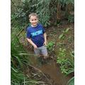 Jack exploring murky waters