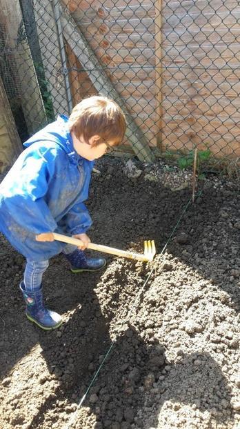 Oscar has been planting in his garden