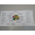 Using pie charts to represent data!