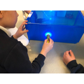 Year 2 are super scientists!