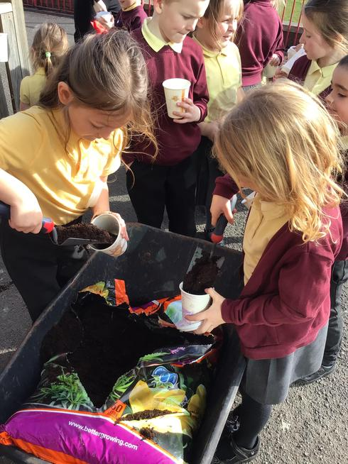 We learnt about spring and growing plants.