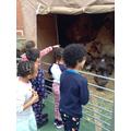 Year 2 - Nativity Scene