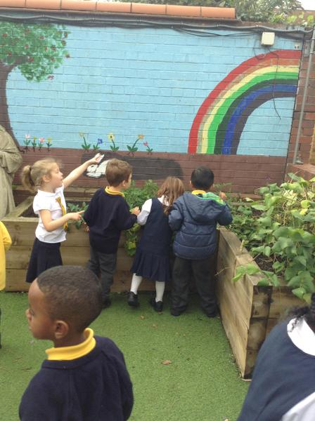 EYFS looking at God's creation in our Peace Garden