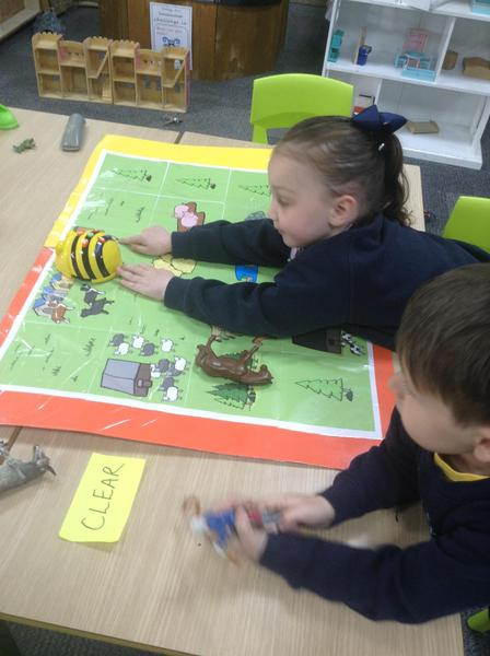 The children learn how to program beebot to move around the farm map.