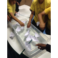 Year 5 STEAM DAY: Float a Boat