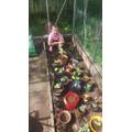 Millie's garden