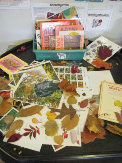 Reading books about Autumn time