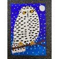 Izzy's owl art
