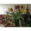 SFD - More flowers
