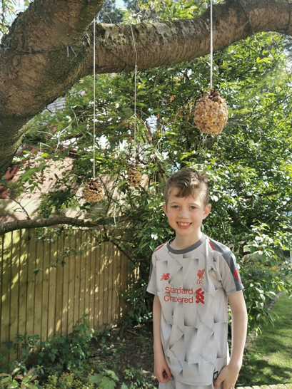 The finished bird feeders.